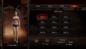 Character, Pawn customisation in Dragon's Dogma